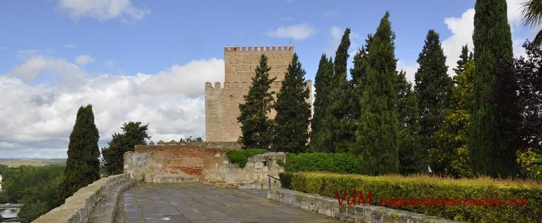 Castell d'Enric II de Trastamara de Ciudad Rodrigo de Salamanca