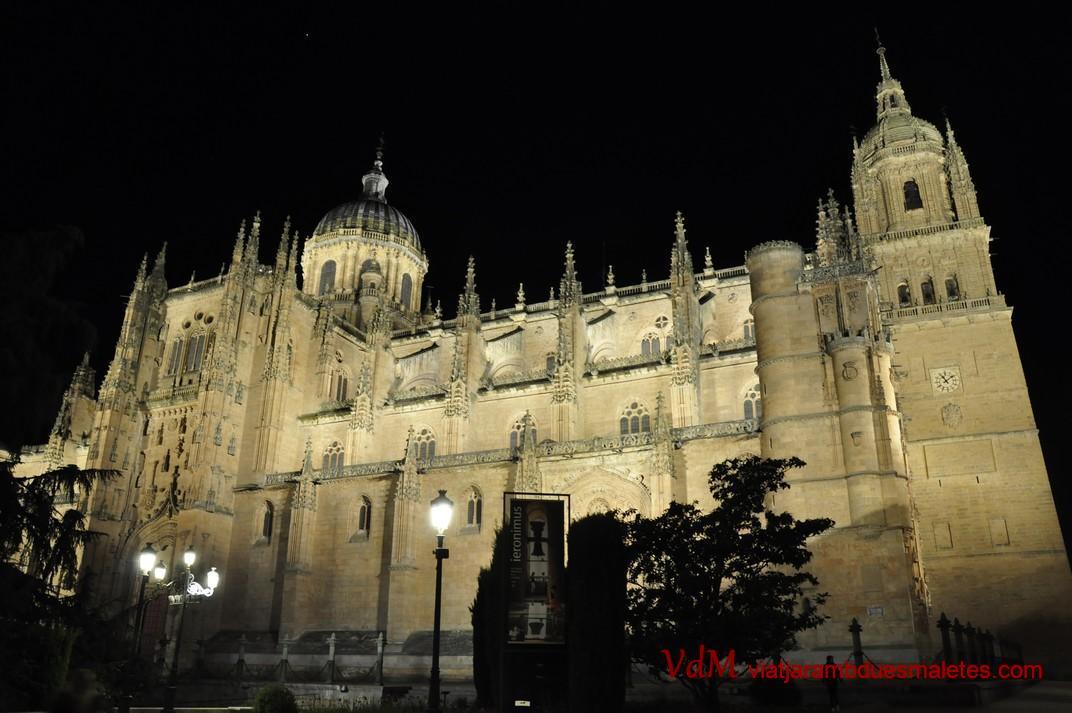 Catedral nova i Catedral vella de Salamanca