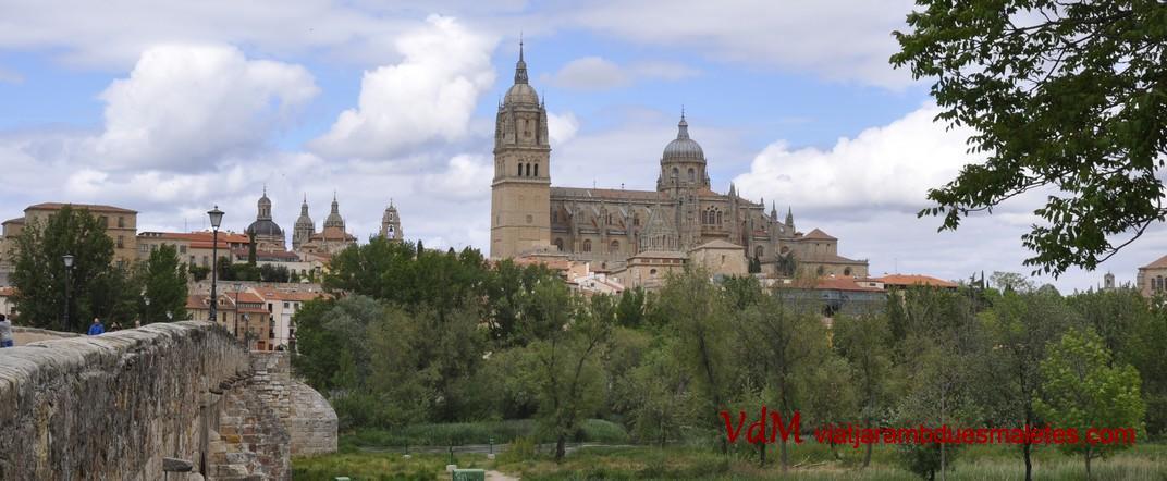 Catedrals de Salamanca des del Pont Romà