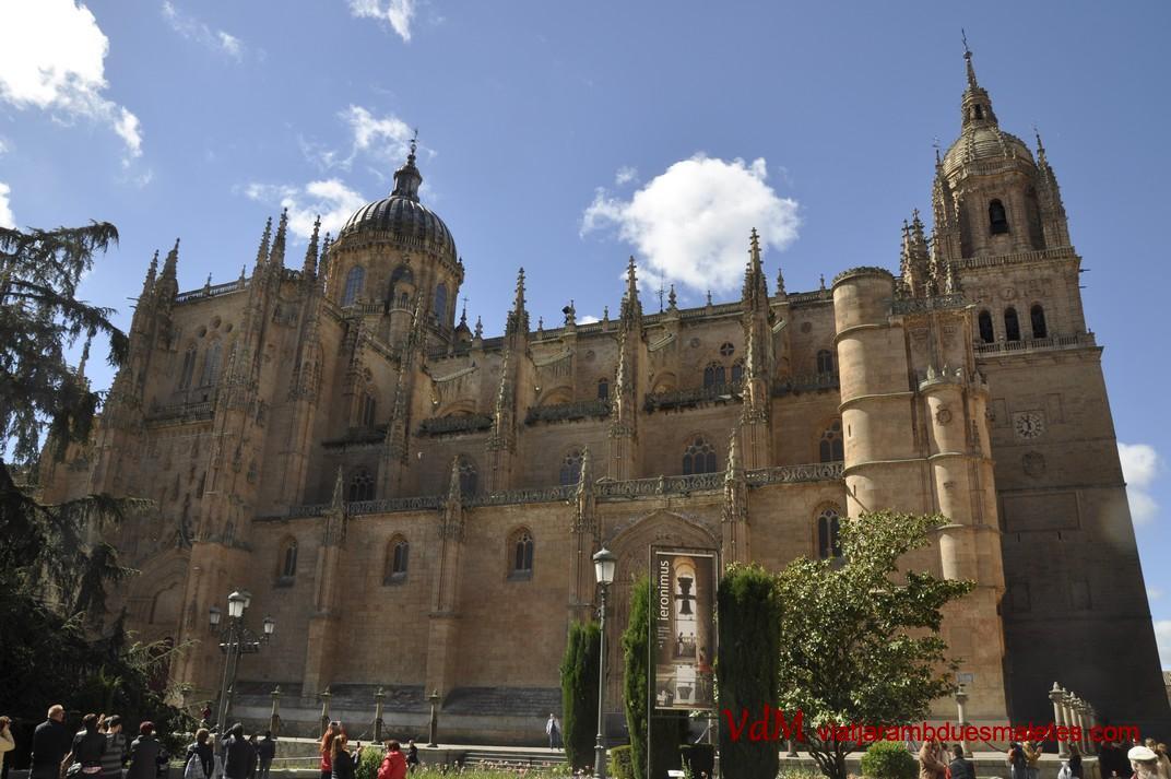 Façana de la plaça d'Anaya de la Catedral de Salamanca