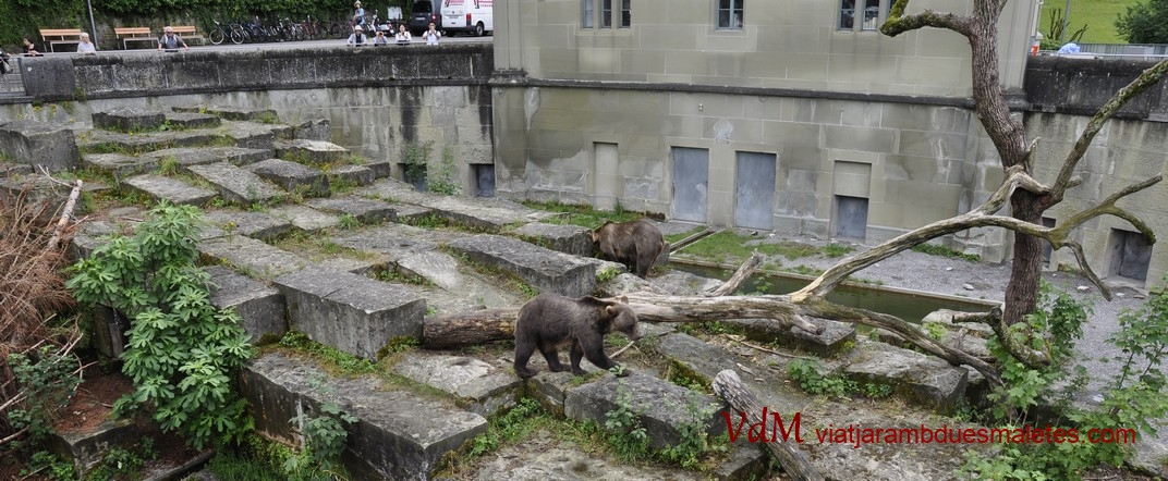 El parc dels ossos de Berna