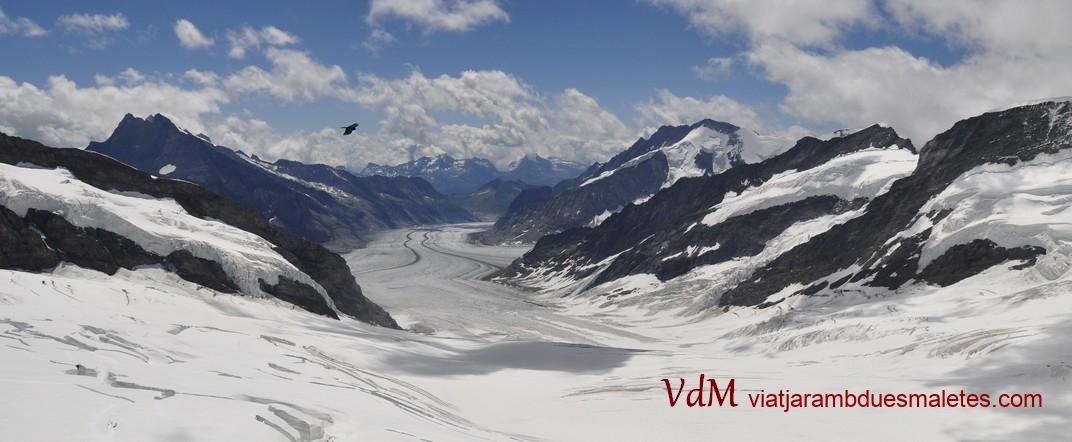 La glacera d'Aletsch de Jungfraujoch