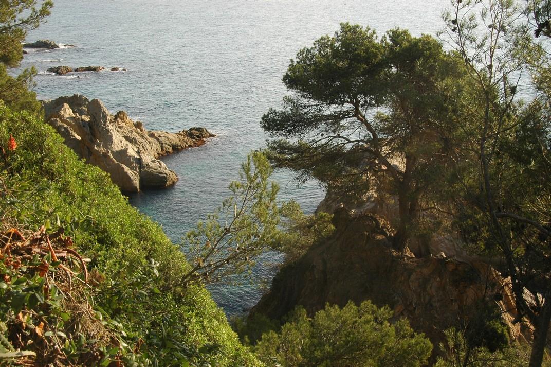 Penya-segat dels Jardins de Santa Clotilde de Lloret de Mar