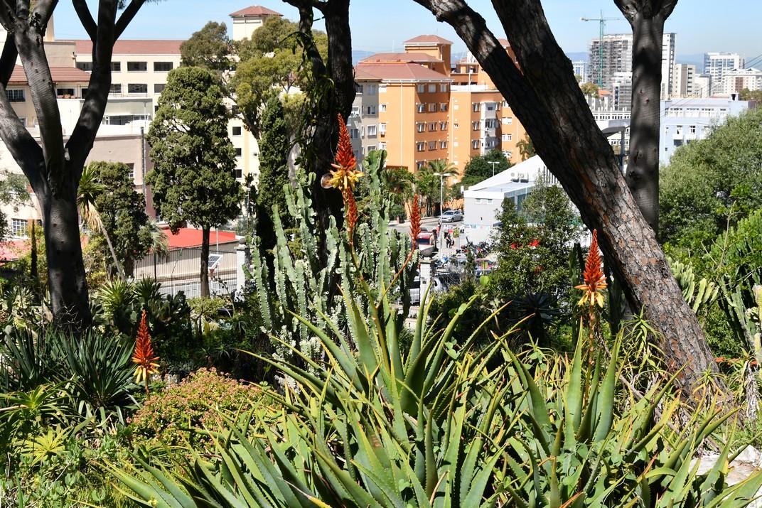Jardins de l'Alameda de Gibraltar