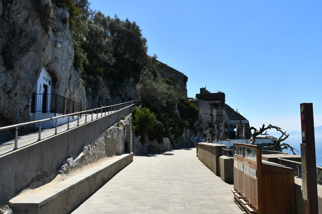 Mirador del cau del macacos de Gibraltar