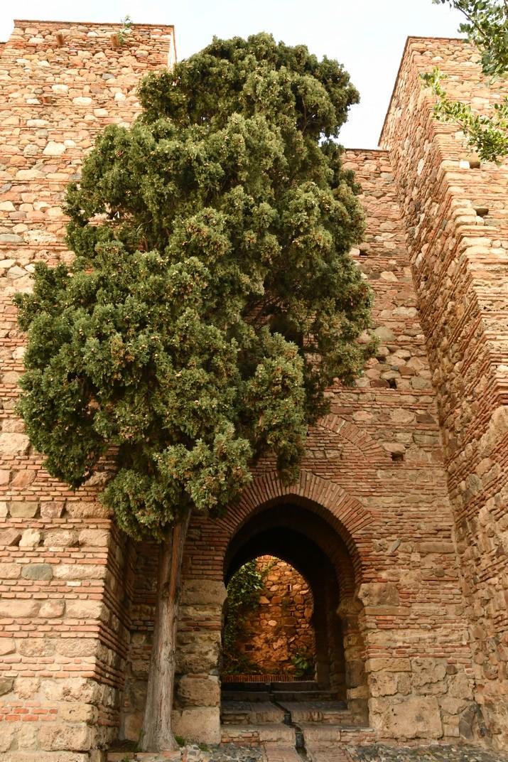 Porta de les Habitacions de Granada de l'Alcassaba de Màlaga