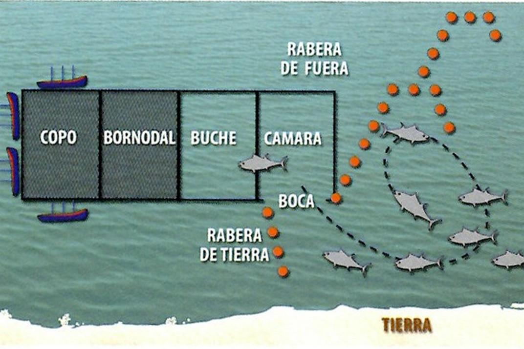 Xarxes de pesca de l'Almadrava - Vejer de la Frontera