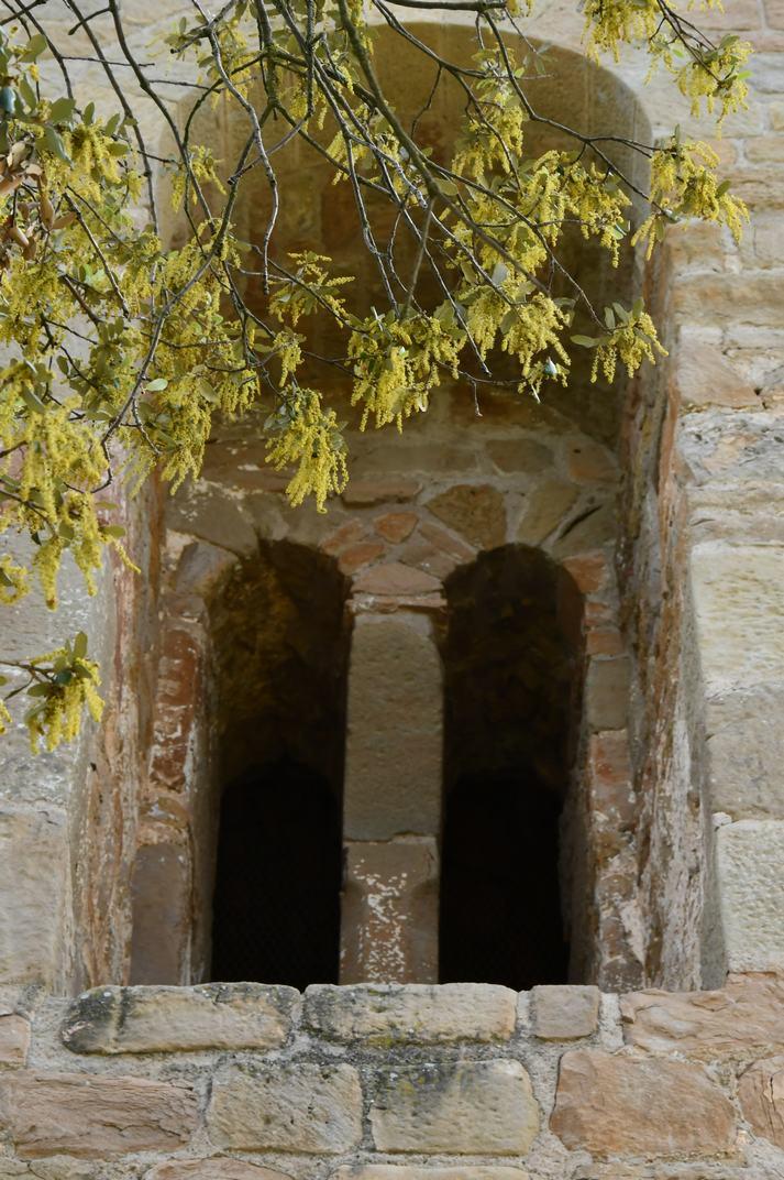 Finestra de la façana oest de l'església-canònica de Sant Pere de Ponts