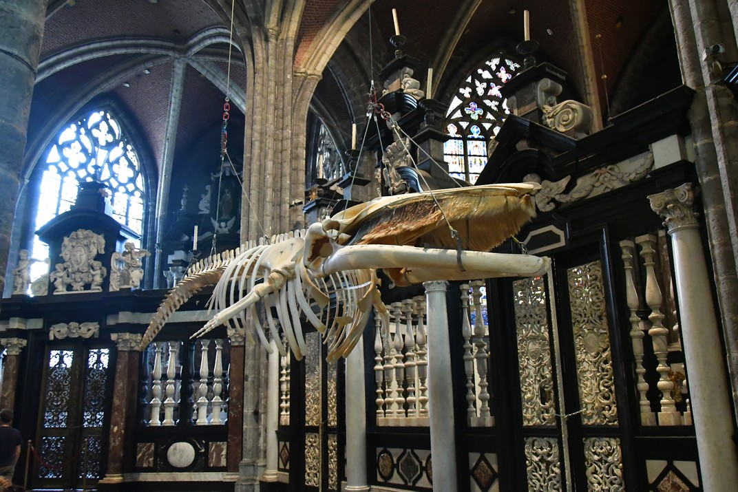 Deambulatori de la Catedral de Sant Bavó de Gant