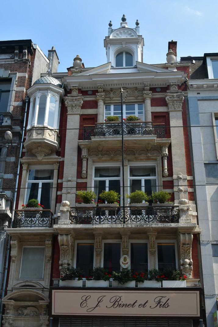 Edificis del Carrer Reial de Brussel·les