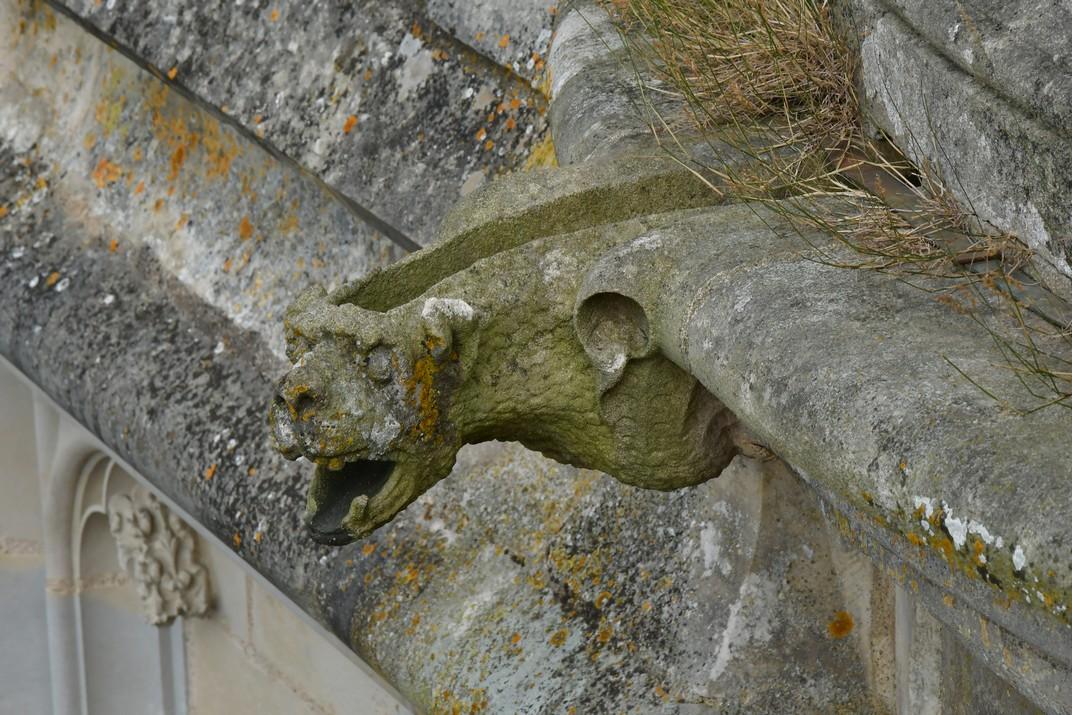 Gàrgoles de la torre nord de la Catedral de Bourges