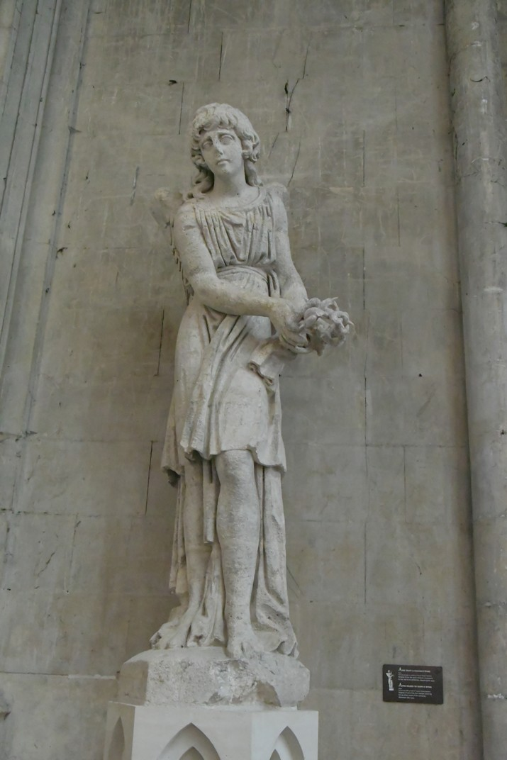 Imatges de la Catedral d'Orleans