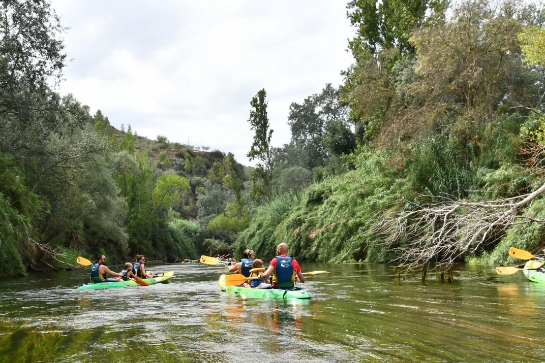 Canal de l'illa de Cautera entre Miravet i Benifallet per l'Ebre