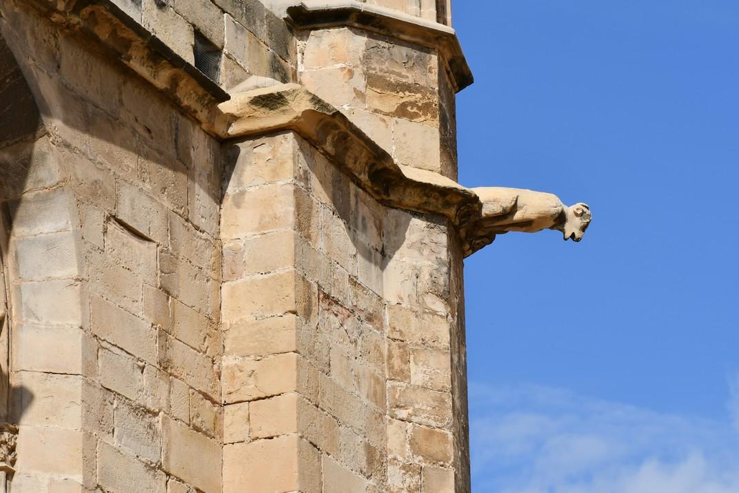 Gàrgola de la Catedral de Tortosa