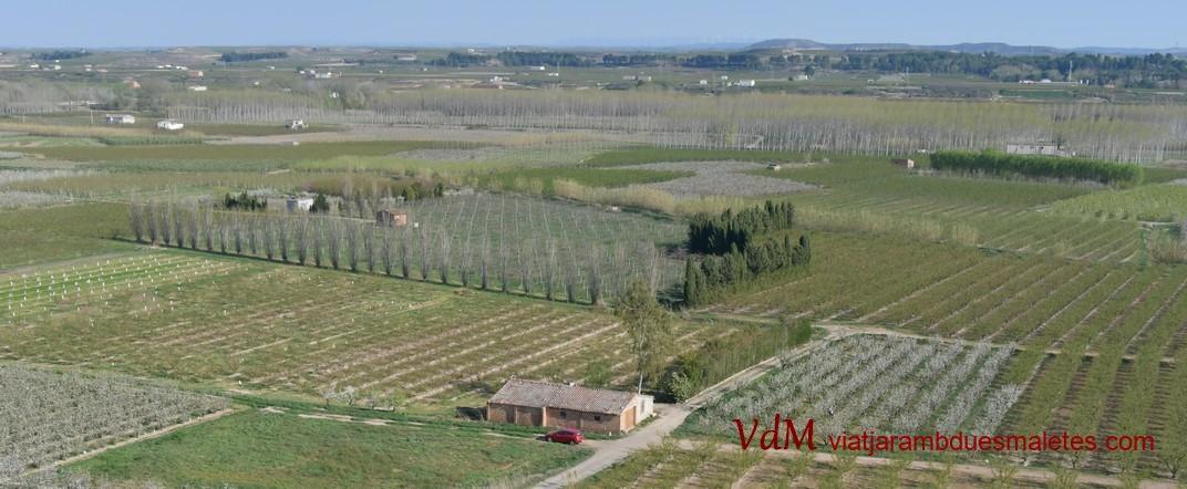 Baix Segre des de Sant Joan de Carratalà d'Aitona