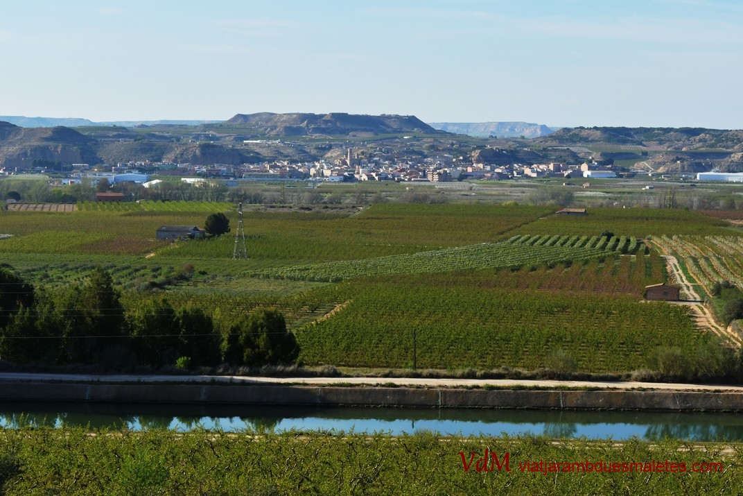 Vista d'Aitona des del poblat de Genó