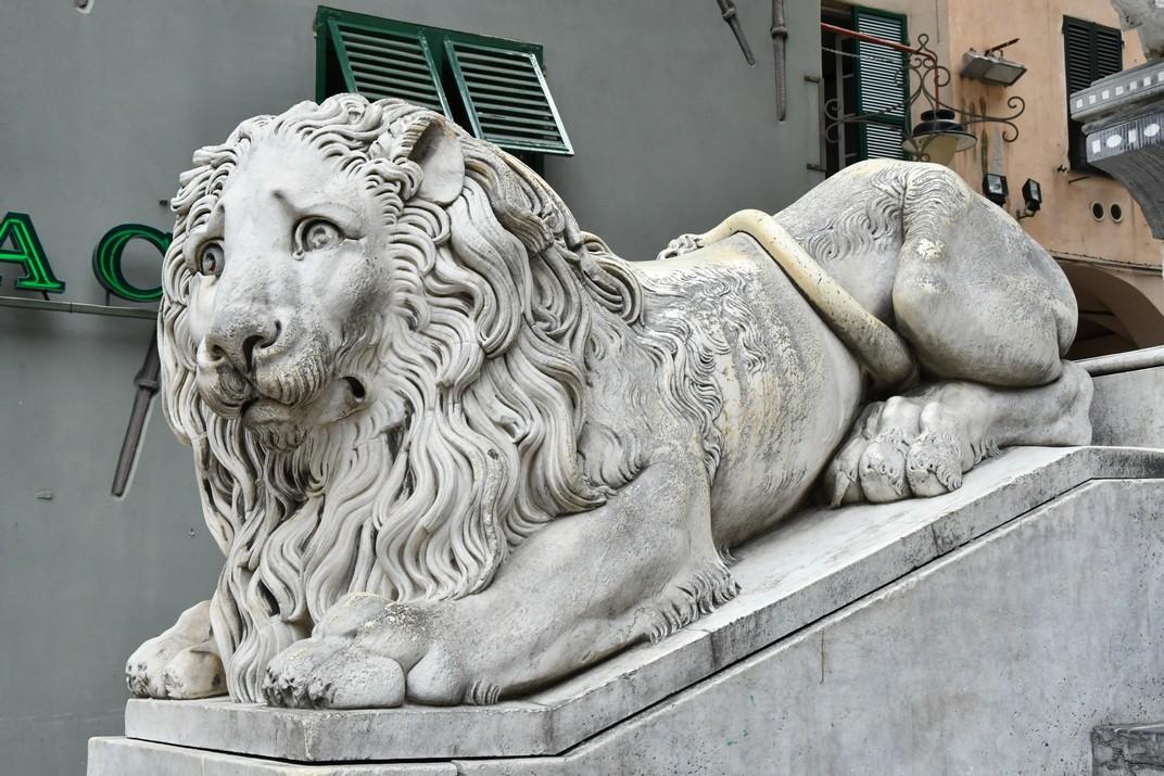 Lleó de l'escala de la Catedral de Sant Llorenç de Gènova