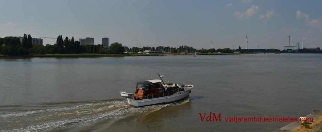 Moll - riu Escalda d'Anvers
