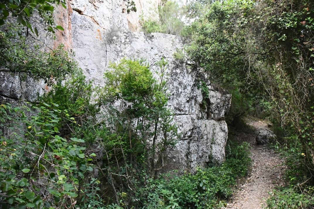 Pedrera de la ruta Mont-ral a Farena de les Muntanyes de Prades