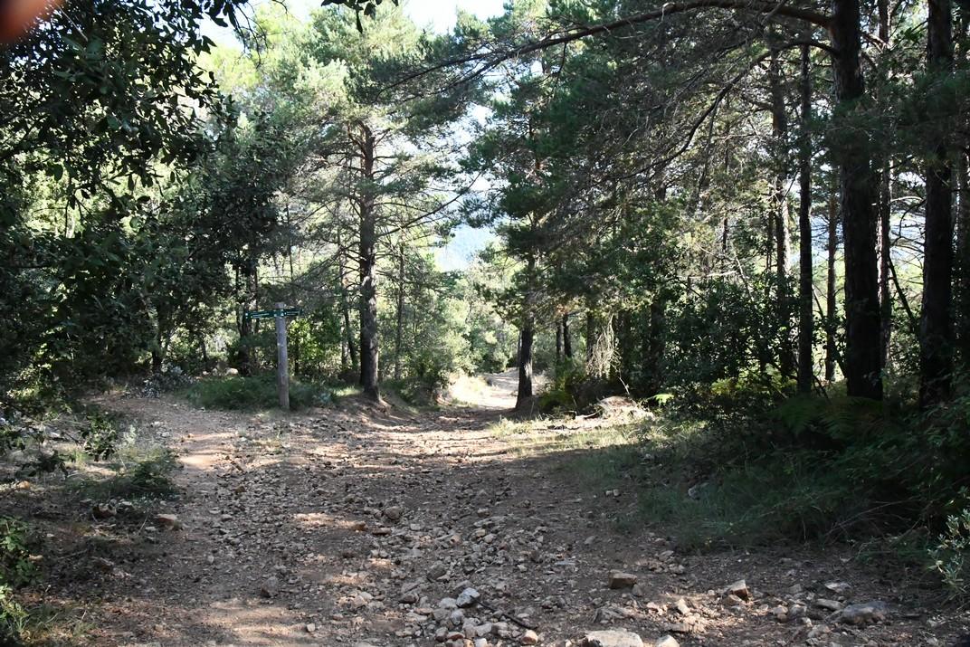 Sender de la ruta Mont-ral a Farena de les Muntanyes de Prades