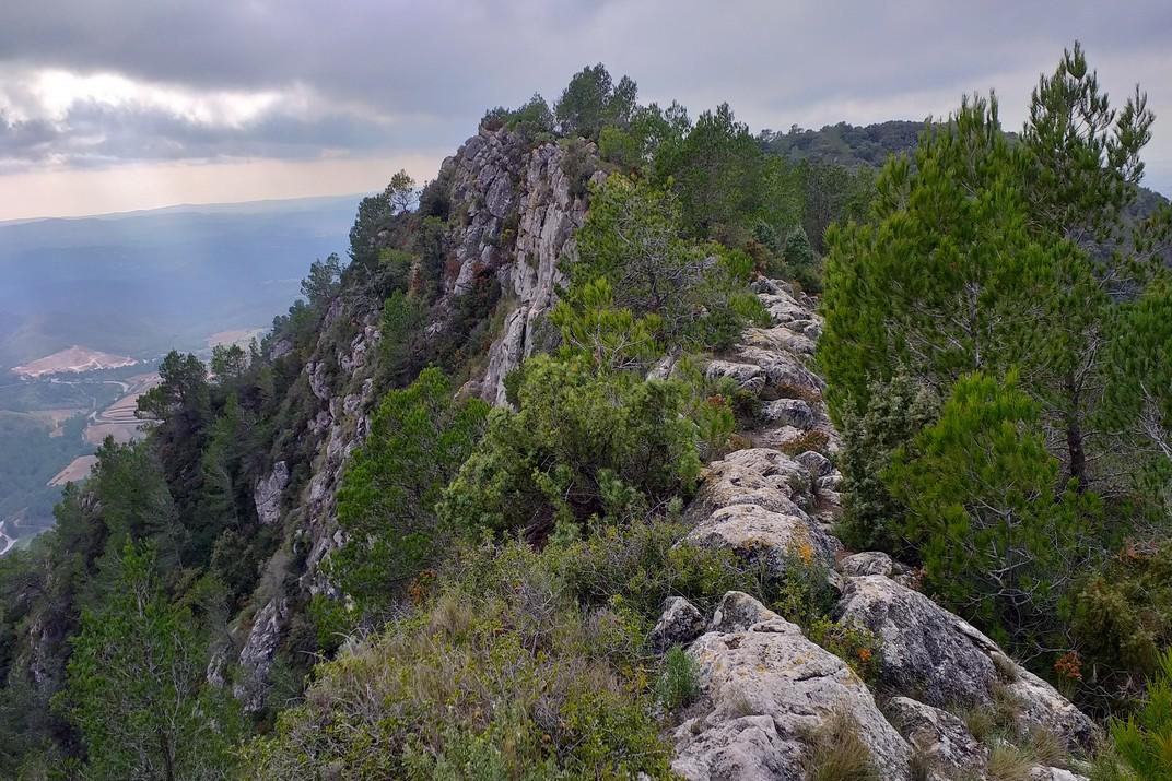 Carena cap al Puig de la Talaia del Montmell