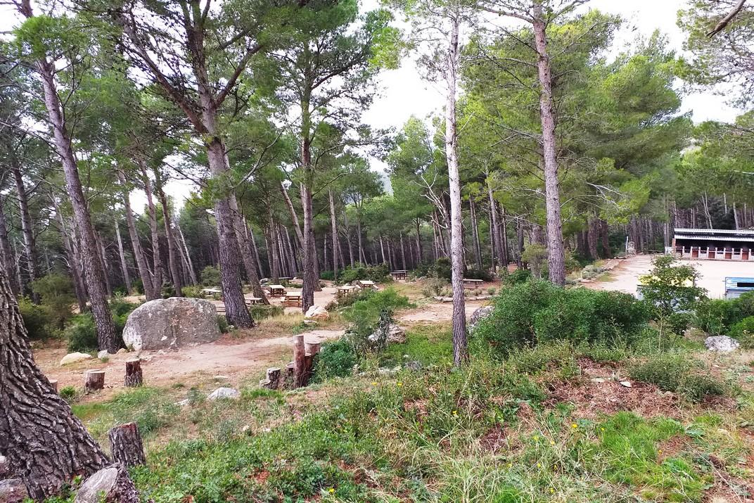 Zona d'acampades i barbacoes de l'Àrea Recreativa Forestal del Montmell