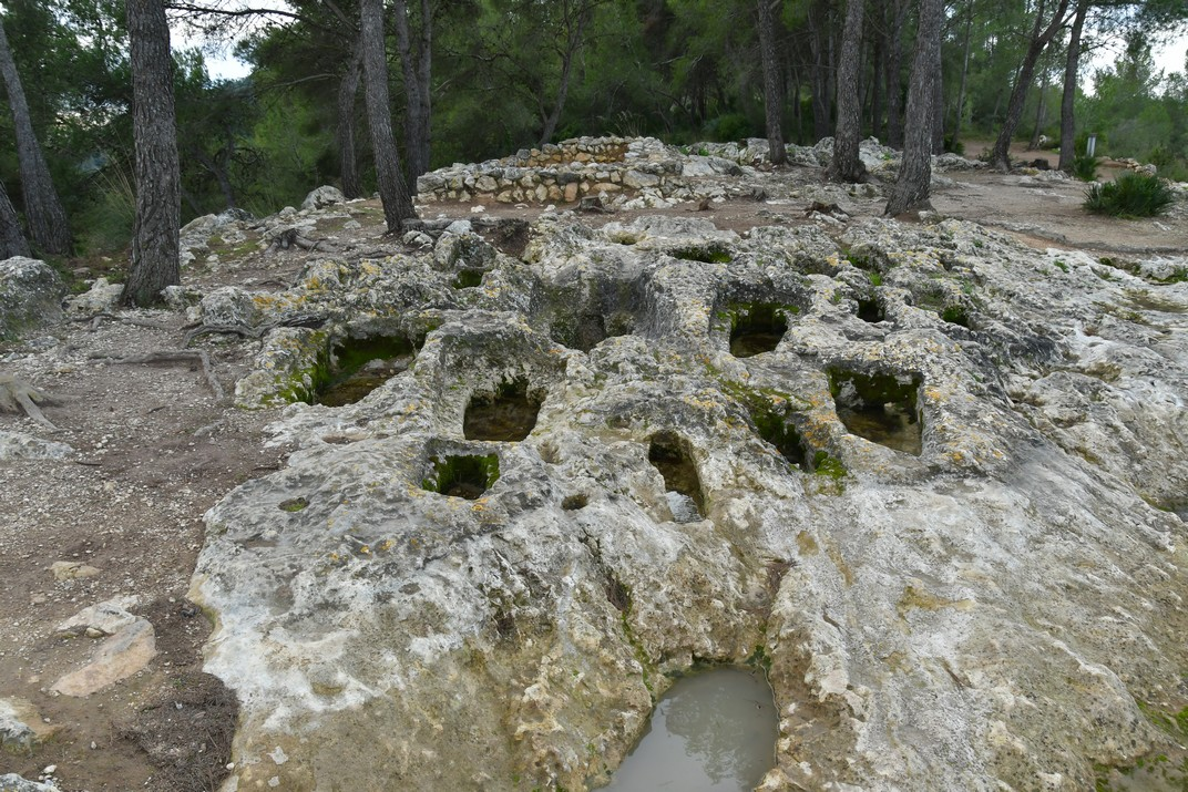 Necròpolis del Pla dels Albats d'Olèrdola