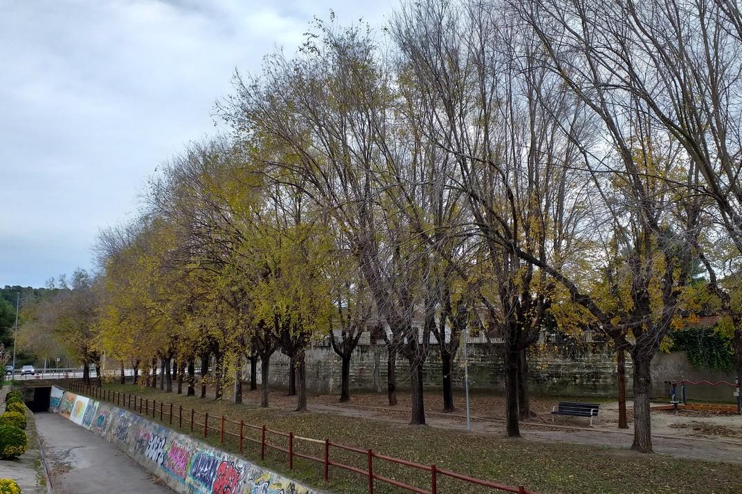 Riera de Canyelles - Parc d'Olèrdola