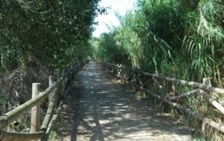 Camí de Sirga de Sant Jaume d'Enveja