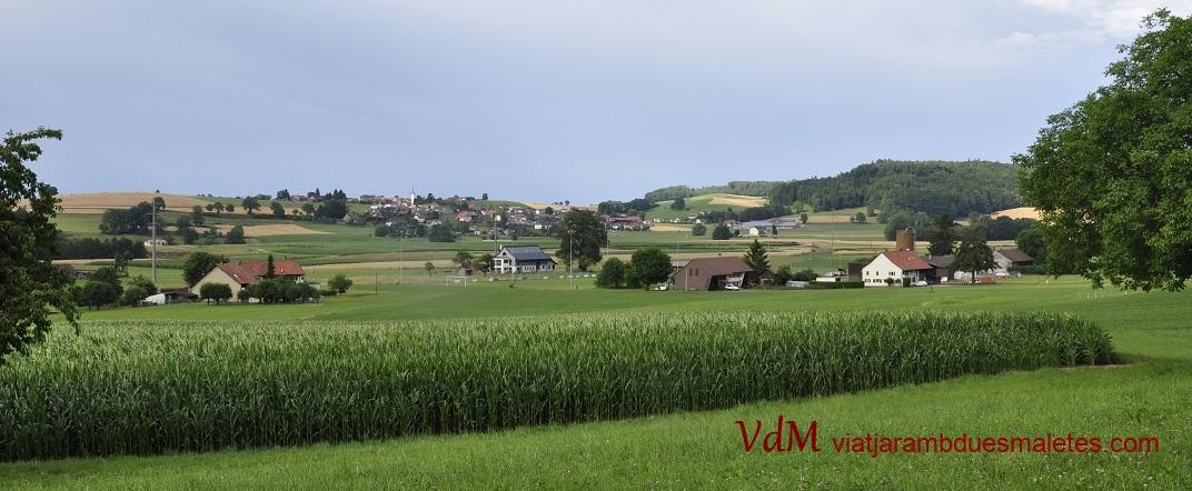 Conreus de blat de moro de Friburg