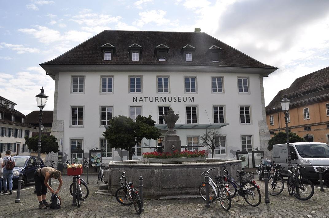 Font de Klosterplatz de Solothurn